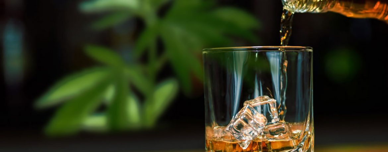 Марихуана VS Алкоголь или 10 фактов почему Шишки лучше Спирта